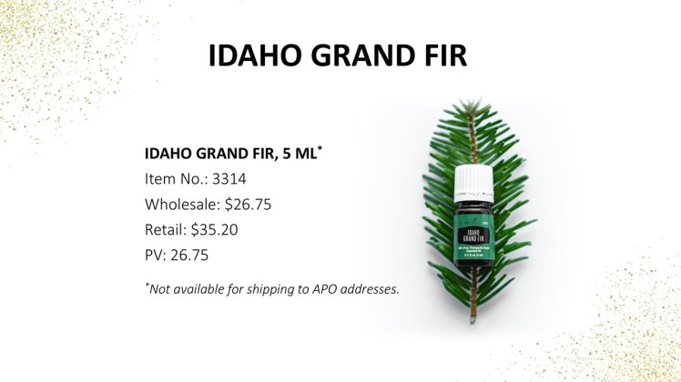 Idaho Grand Fir